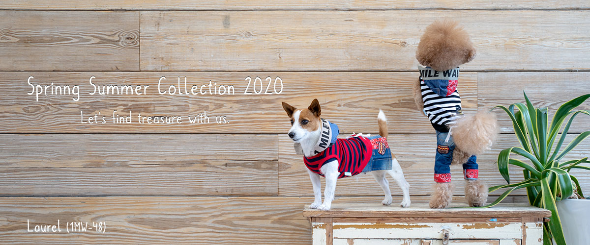 Spring Sumer Collection 2019|犬服・ワンマイルウォーキーズ(1 mile walkies)
