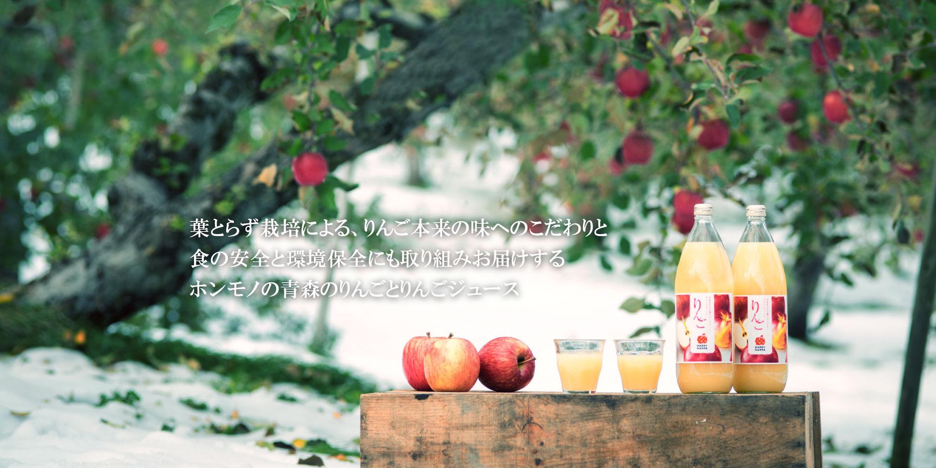 青森の葉とらずりんご HAPPYHAPPAメインイメージ1