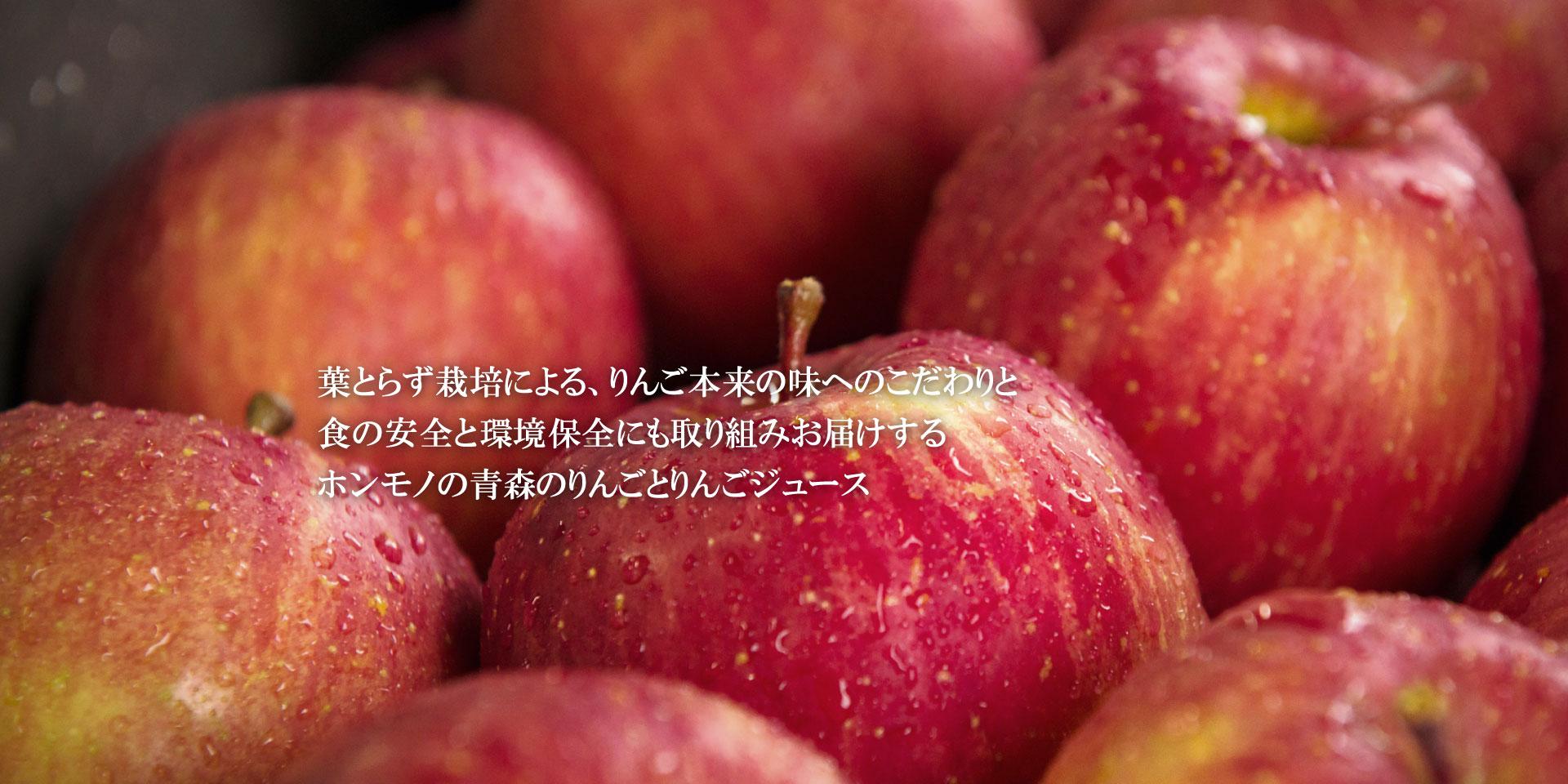 青森の葉とらずりんご HAPPYHAPPAメインイメージ6