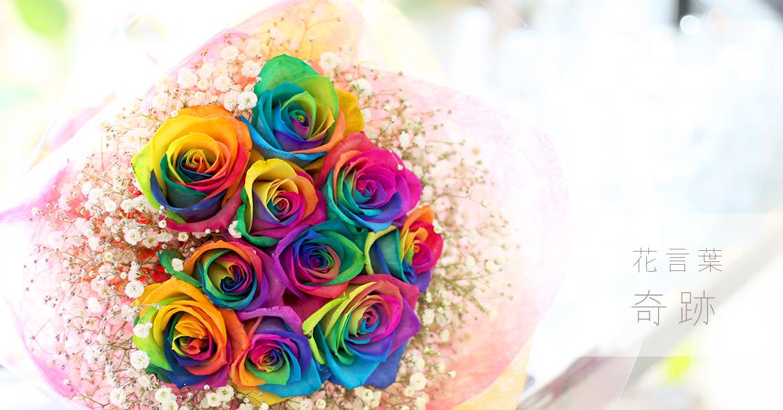 レインボーローズの花言葉は「奇跡」